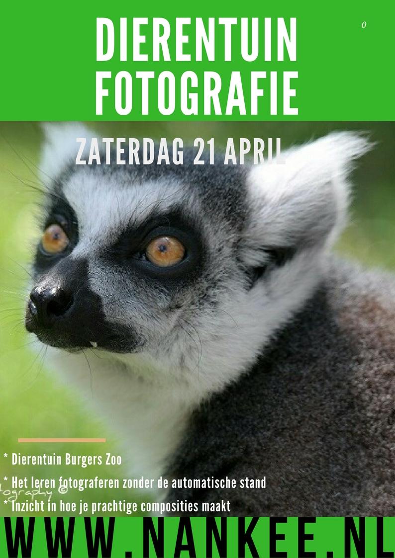 fotoworkshop (1)