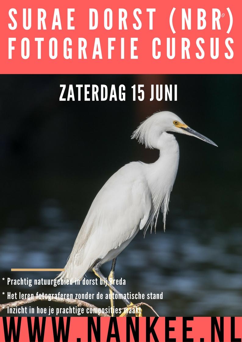 fotoworkshop (5)