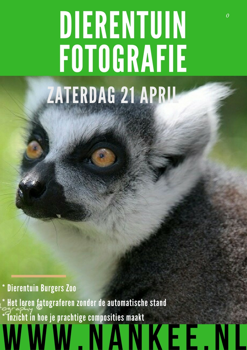 fotoworkshop (1)