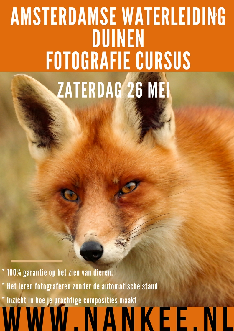 fotoworkshop (3)