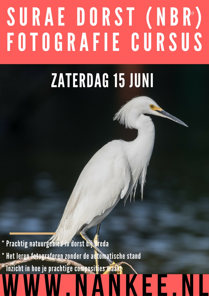 fotoworkshop (5)
